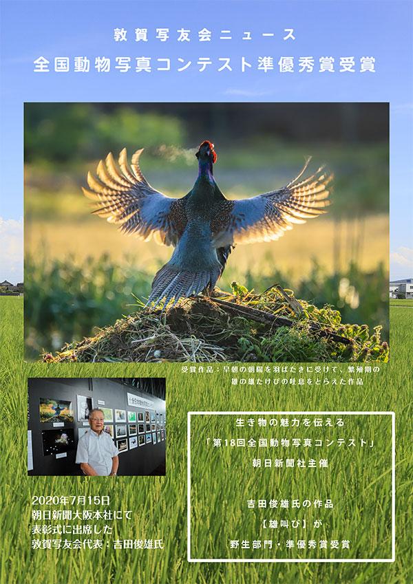 「全国動物写真コンテスト」野生部門:準優秀賞受賞